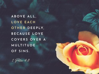 "VOTD June 13, 2019 ""Above all, keep fervent in your love for one another, because love covers a multitude of sins."" ‭‭1 PETER‬ ‭4:8‬ ‭NASB‬‬"