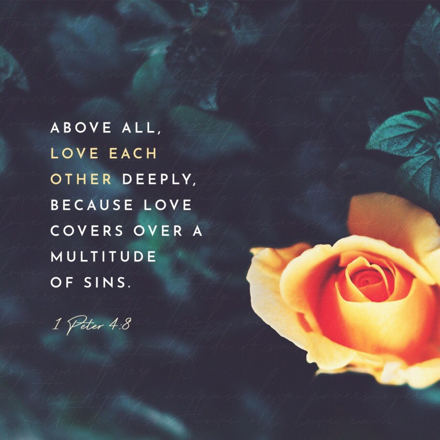"""VOTD June 13, 2019 """"Above all, keep fervent in your love for one another, because love covers a multitude of sins."""" 1 PETER 4:8 NASB"""