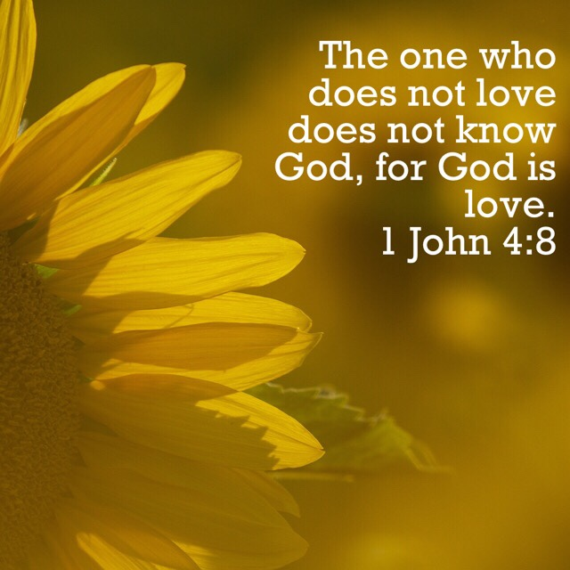 VOTD August 13 - The one who does not love does not know God, for God is love. 1 John‬ ‭4:8‬ ‭NASB‬‬