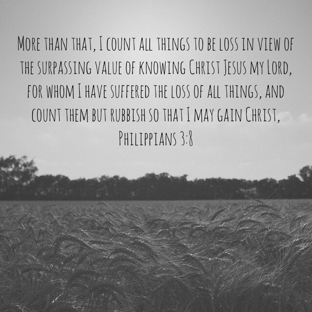 VOTD August 30 - More than that, I count all things to be loss in view of the surpassing value of knowing Christ Jesus my Lord, for whom I have suffered the loss of all things, and count them but rubbish so that I may gain Christ,  Philippians 3:8 NASB