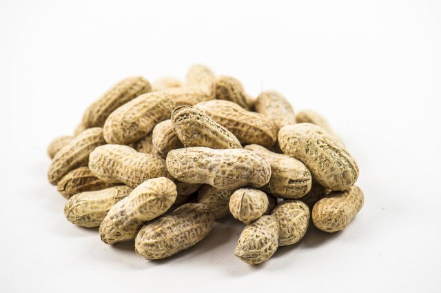 Exploring the history of peanuts - Peanuts and their creamy offshoot, peanut butter, are popular snack foods and lunchtime staples. The distinct and mild flavor of peanuts attracts many people to these shelled legumes, which many might be surprised to learn aren't true nuts.