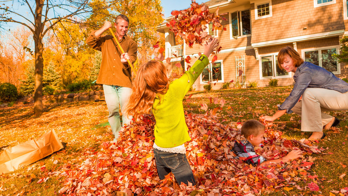 Interesting facts about fall