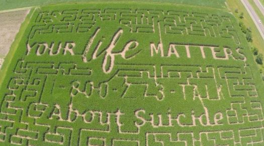 "Suicide Hotline into Corn Maze - A Wisconsin farmer decided to put the suicide hotline into his corn maze as well as Your Life Matters on the the corn maze. Govin's Farm in Menomonie, WI has an 11-acre maze (that is about the size of 14 football fields). On the corn maze it says ""Your life matters"" and has the number for the National Suicide Prevention Lifeline: 1-800-273-TALK (8255)."