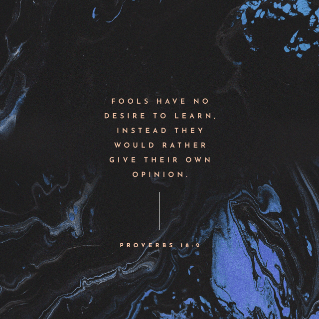 VOTD October 18 - A fool does not delight in understanding, But only in revealing his own mind. Proverbs 18:2 NASB