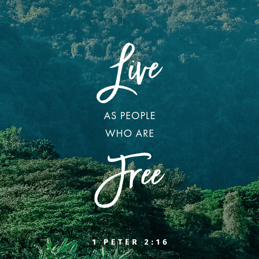 "VOTD September 29 - ""Act as free men, and do not use your freedom as a covering for evil, but use it as bondslaves of God."" 1 Peter 2:16 NASB"