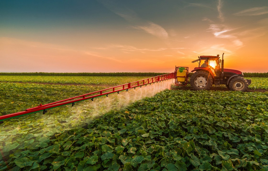 Agriculture and the economy - The agricultural sector plays a strategic role in a nation's economic development and prosperity.