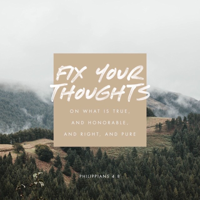 """VOTD November 18 - """"Finally, brethren, whatever is true, whatever is honorable, whatever is right, whatever is pure, whatever is lovely, whatever is of good repute, if there is any excellence and if anything worthy of praise, dwell on these things."""" Philippians 4:8 NASB"""