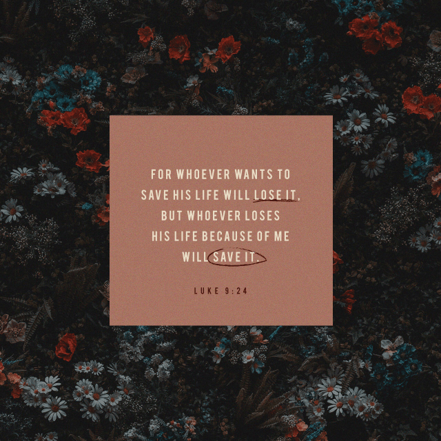 """VOTD November 7 - """"For whoever wishes to save his life will lose it, but whoever loses his life for My sake, he is the one who will save it."""" Luke 9:24 NASB"""