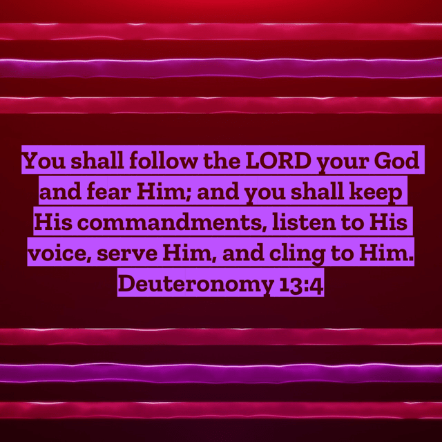 """VOTD November 11 - """"You shall follow the LORD your God and fear Him; and you shall keep His commandments, listen to His voice, serve Him, and cling to Him."""" Deuteronomy 13:4 NASB"""
