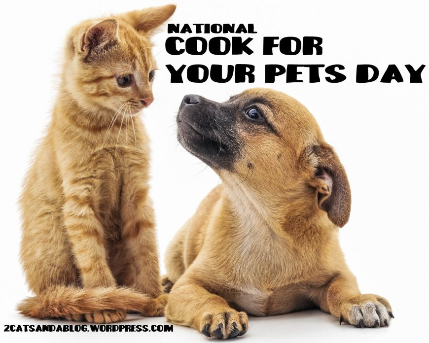 national-cook-for-your-pets-day-4892162