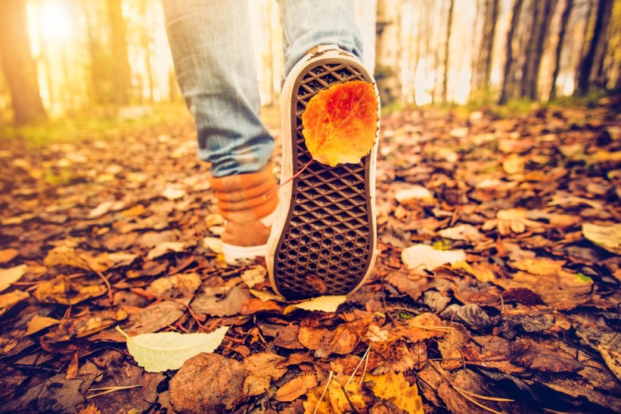 It's okay if walkers miss the 10,000-step standard - The 10,000-step standard - which equates to roughly five miles, depending on a person's stride length and speed - has some surprising origins that are not necessarily rooted in medical science.