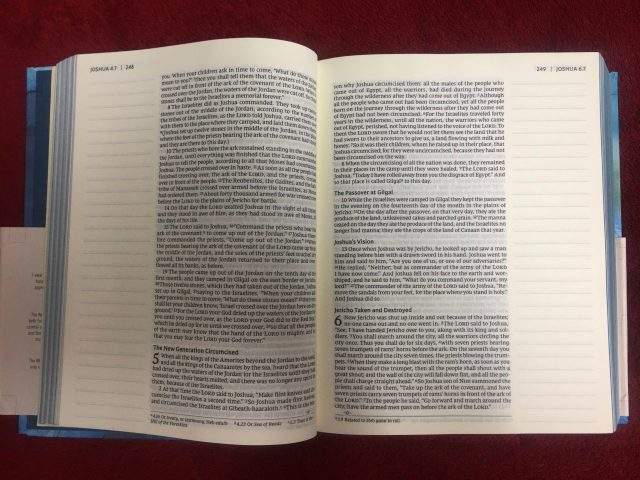 Artisan Collection Journaling Bible by Zondervan - Inside Bible Pages with Note / Journaling sides. #BibleGatewayPartner #BGBG2 #BibleJournaling #Zondervan