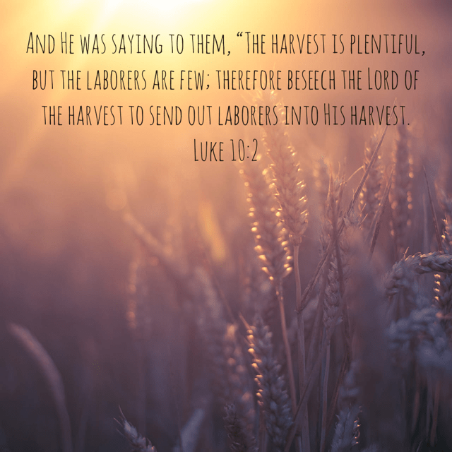 """VOTD May 6 - """"And He was saying to them, """"The harvest is plentiful, but the laborers are few; therefore beseech the Lord of the harvest to send out laborers into His harvest."""" Luke 10:2 NASB"""