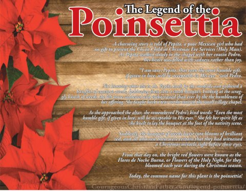 The Legend of the Poinsettia Printable