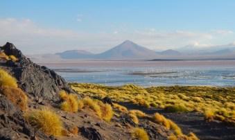 laguna colorada, Sud Lipez, Bolivie