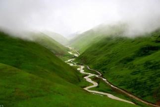 Brouillard montangne Yunnan