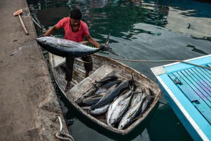 Dans le port de Malé, aux Maldives, le 16décembre 2019. PHOTO / CARL COURT / GETTY IMAGES ASIAPAC via AFP