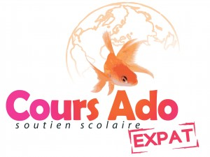 cours particuliers londres