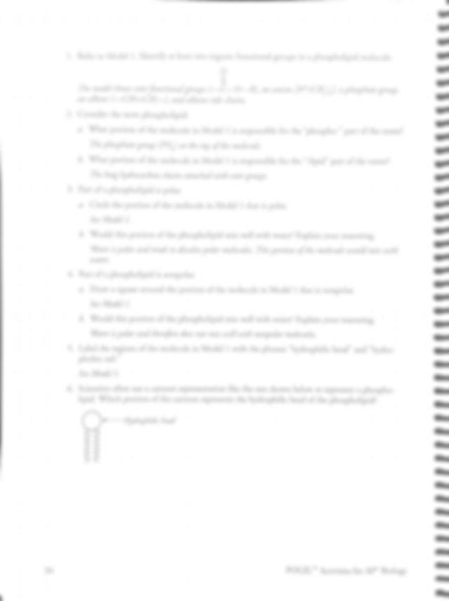 4_5_WS_AP_Membrane Structure-S_Pogil_key.pdf