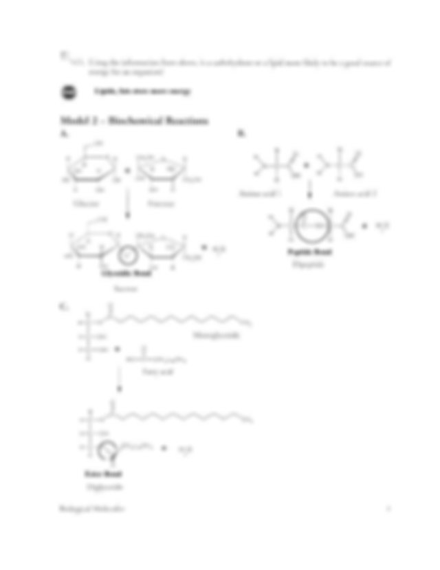 Kami_Export_-_Kayla_Powers_-_Biomolecules_POGIL.pdf