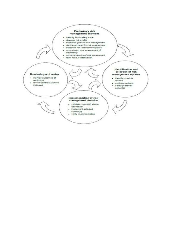 Risk Analysis Process Qualitative Research Essay.docx