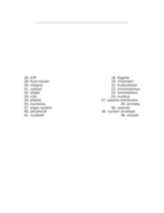 Cell Structure and Function Crossword Puzzle Answer Key