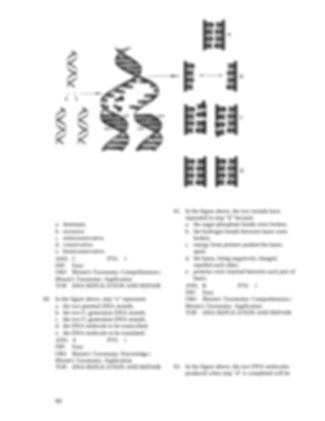 DNA replication is a process a noncomplementary b