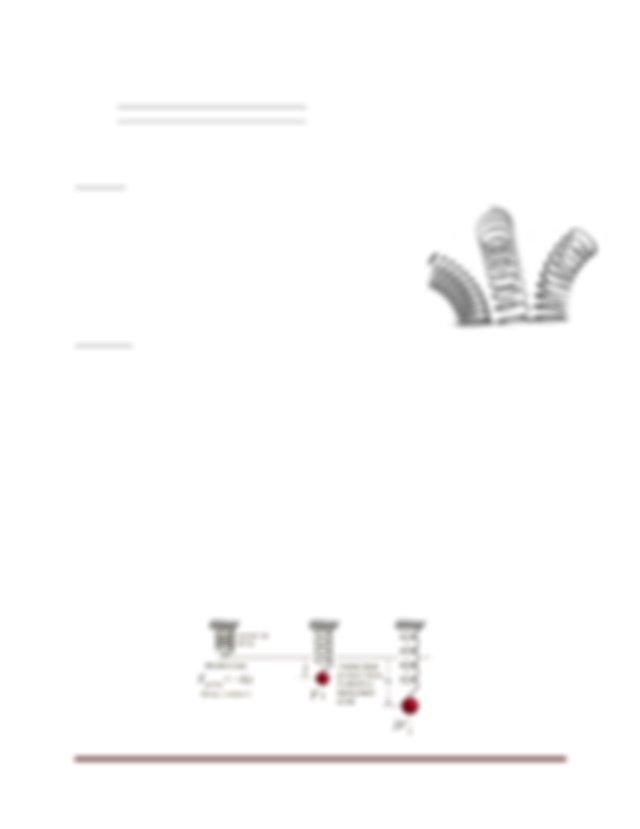 Hooke's Law & Simple Harmonic Motion Virtual Lab.docx