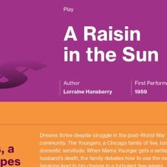 A Raisin In The Sun Plot Diagram Aem Wideband Sensor Wiring Infographic Course Hero