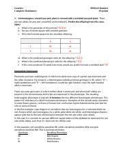 Genetics Worksheet Cx