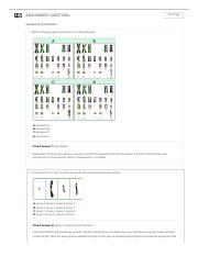 Human Karyotyping Gizmo Answer Key Activity A