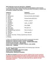 Worksheet 1 Answers