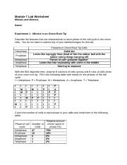 L7Worksheet 1 Module 7 Lab Worksheet Mitosis And