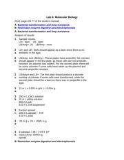 Genetics Of Organisms Lab