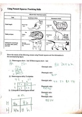 29 Student Worksheet For Microslide Lesson Set 59