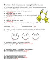 Incomplete And Codominance Worksheet. Worksheets ...