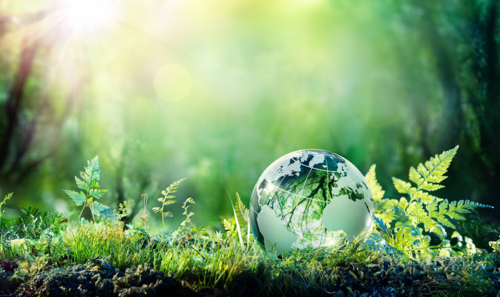 Environmental Law & Climate Change – Shaping a Greener Future at The Law Society