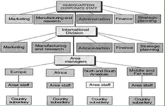 Organizational structure of coca cola essays