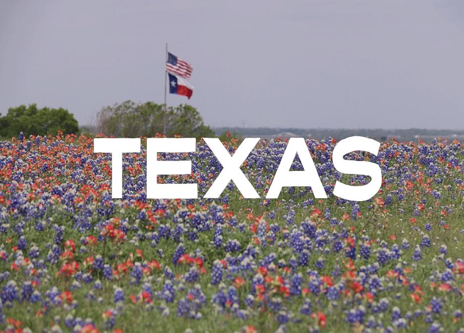 Texas Rules of Civil Procedure