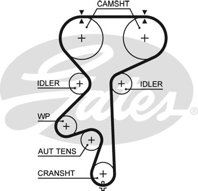 holden astra timing belt diagram kawasaki klf 300 wiring general the courtenay sport blog page 3 z20lex