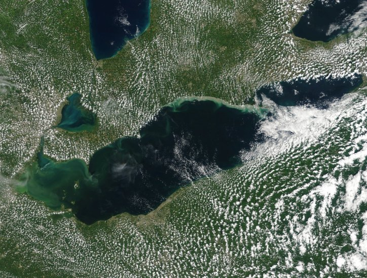 True-color satellite image of Lake Erie used to estimate extent of harmful algal blooms for modeling. Image Source: NASA/MODIS (Moderate Resolution Imaging Spectroradiometer)