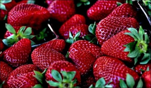 Settlement Reached in the Great Strawberry Fight