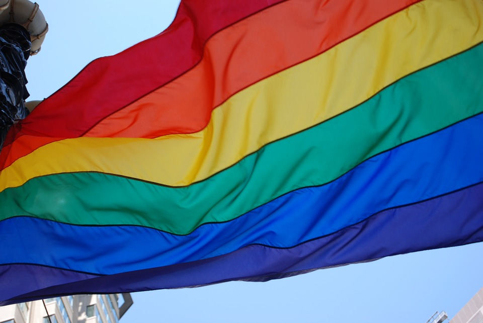 Texas Supreme Court curbs employment benefits for gay spouses of government workers