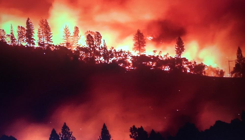 Utility Watchdog OK's PG&E Wildfire Prevention Plan