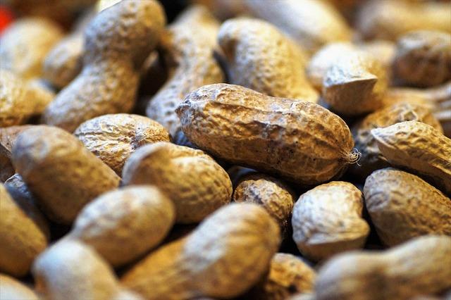 peanuts-allergies.jpg?w=1140&ssl=1