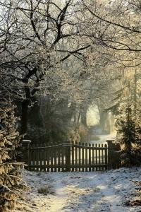 snow gates