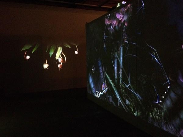 Sonoma Museum of Art