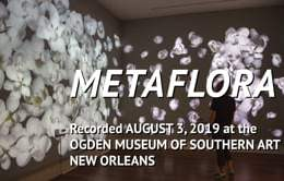 """Metaflora"" in ""Virtual Idylls"" at the Ogden Museum of Southern Art, summer 2019"