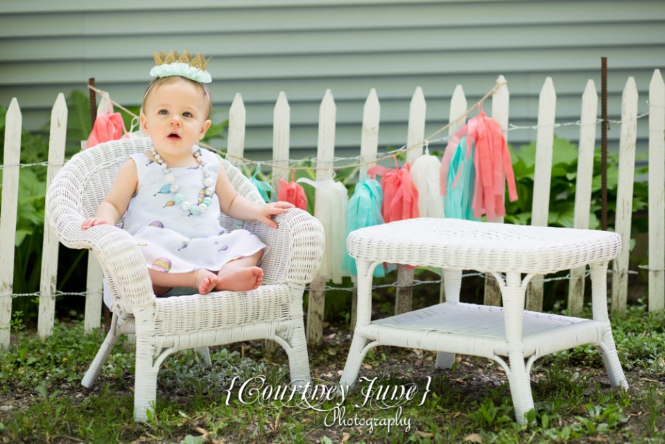 first-birthday-party-dr-suess-minneapolis-family-photographer-first-birthday-photographer-11