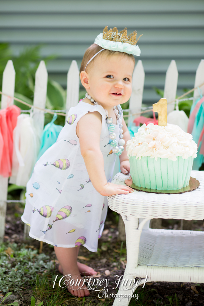 first-birthday-party-dr-suess-minneapolis-family-photographer-first-birthday-photographer-17